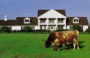 AlliedPRA Southfork Ranch Eventinterface